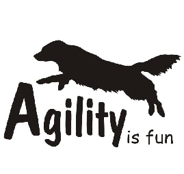 agility-is-fun